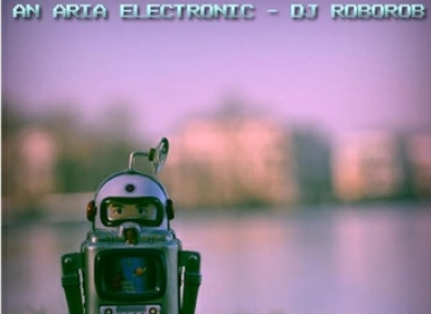 Local Reviews: DJ RoboRob