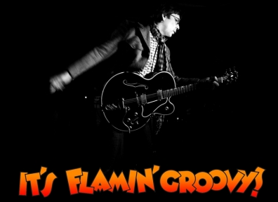 Review: Chris Wilson – It's Flamin' Groovy