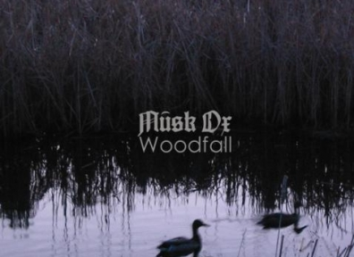 Review: Musk Ox – 