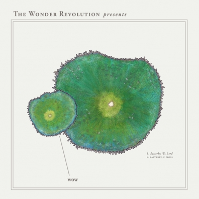 Review: The Wonder Revolution – Wow