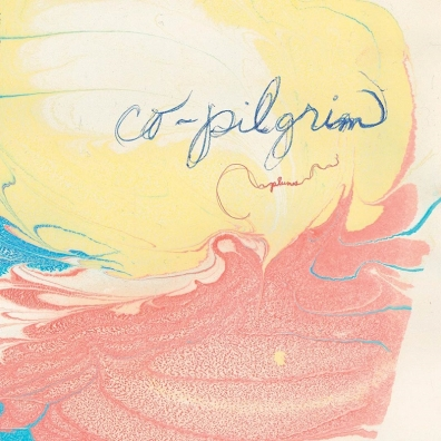 Review: Co-Pilgrim – Plumes