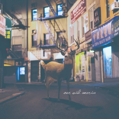 Review: Our Wild America – Self-Titled