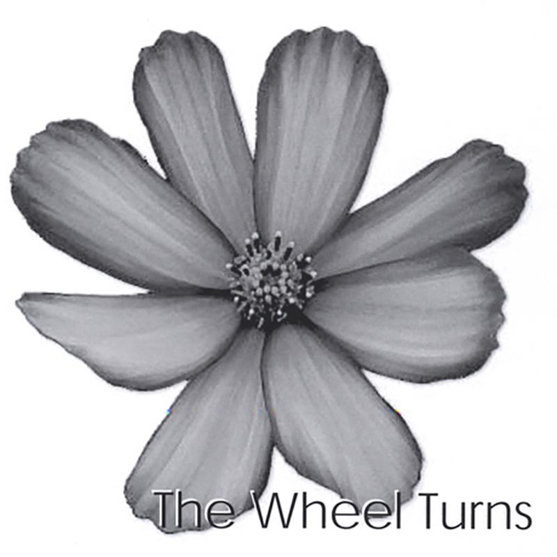 Local Review: Curious Birds – The Wheel Turns