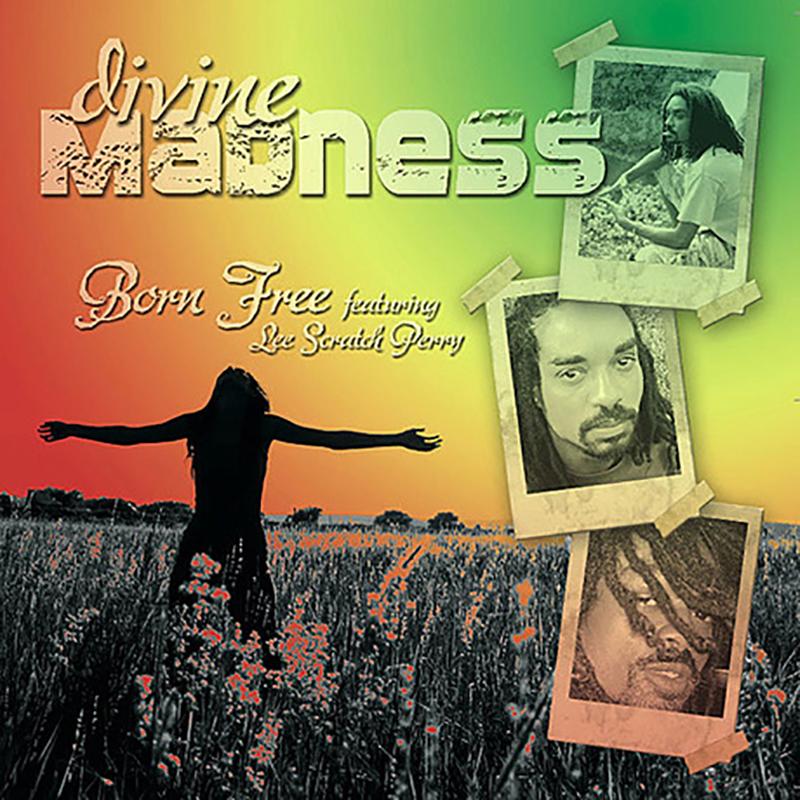 Local Review: Born Free – Divine Madness