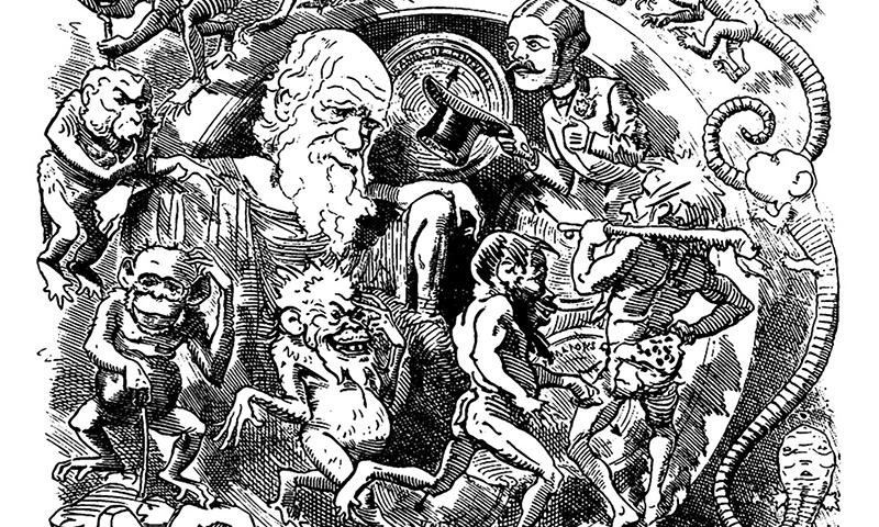 The Wardens of Darwin