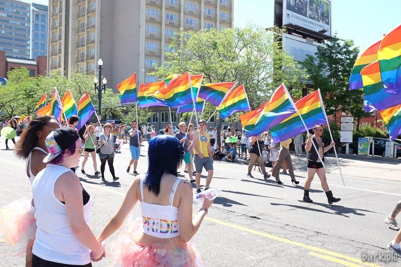 Pride Festival Recap