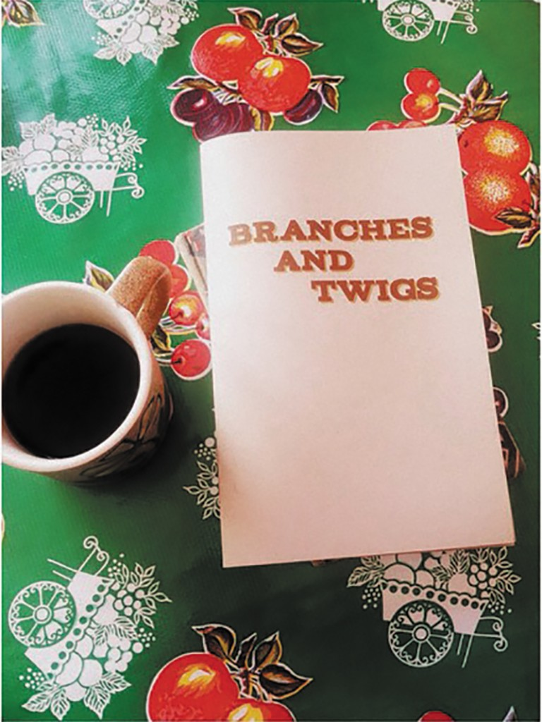 Review: Branches and Twigs