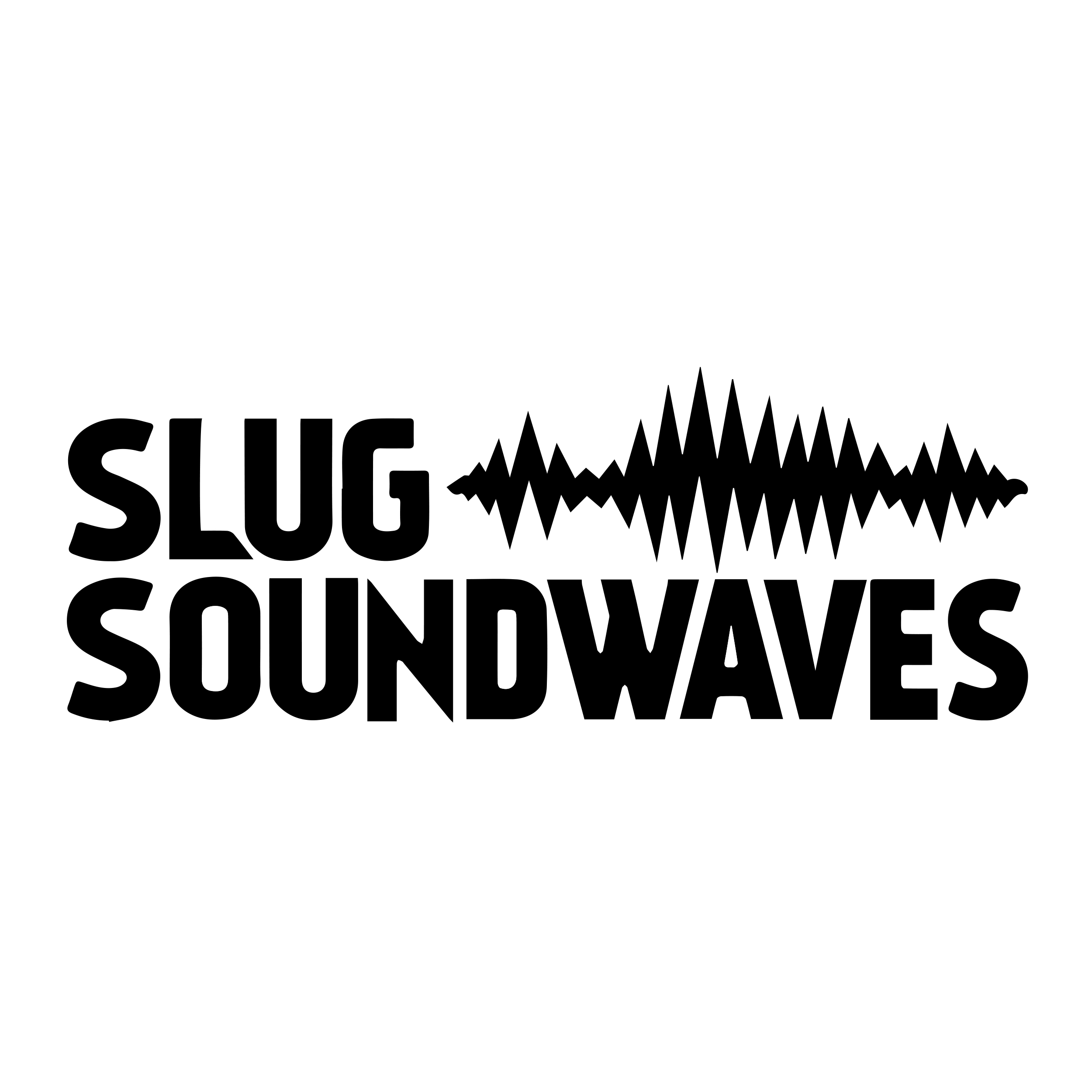 SLUG Mag Soundwaves
