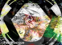 pas musique inside spectrum album cover