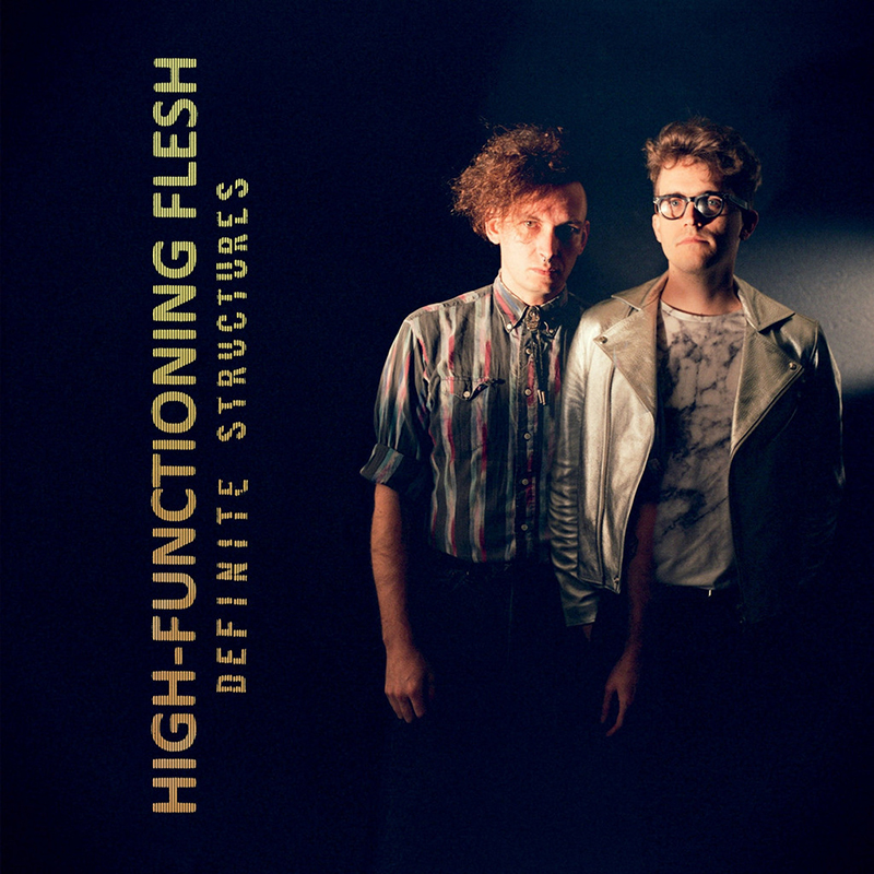Review: High-Functioning Flesh – Definite Structures