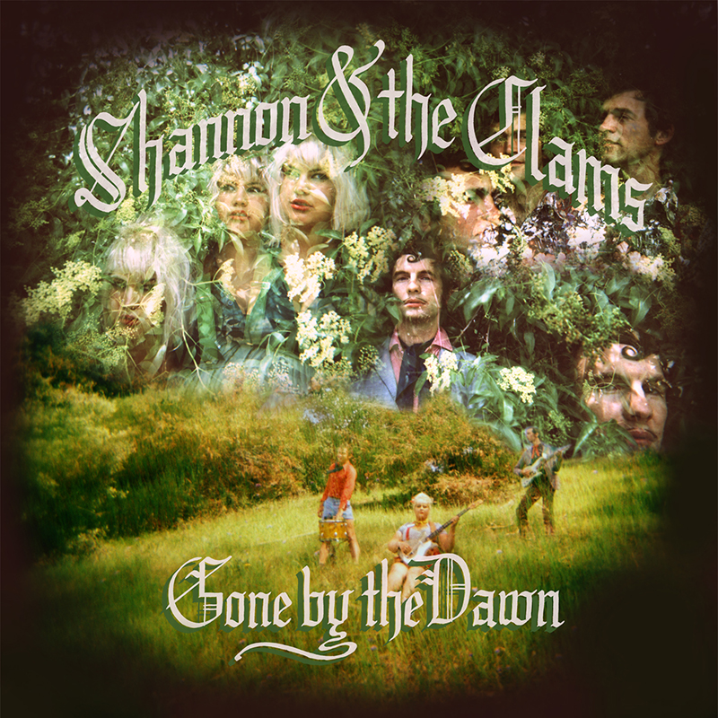 Review: Shannon and the Clams – Gone By The Dawn