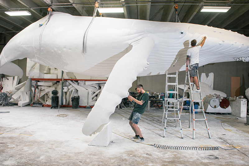 (L–R) Stephen Kesler of Tusk Sculpture and his brother Dan Kesler work together to get this mama humpback whale ready for display.