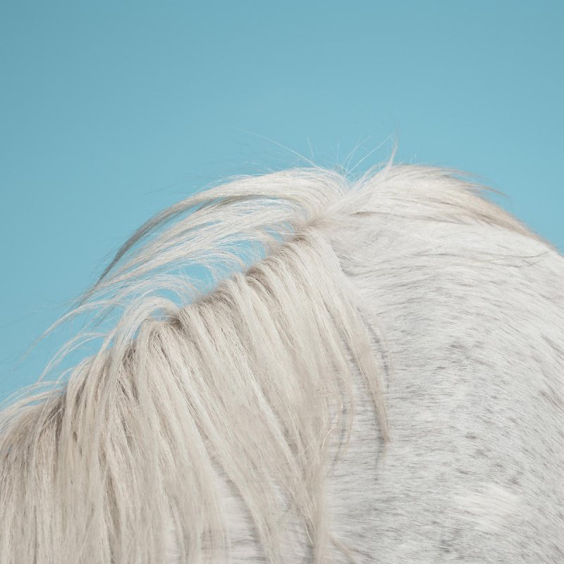Review: Widowspeak – All Yours