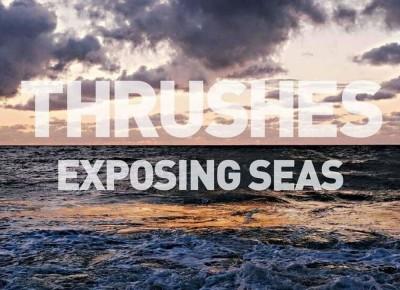Thrushes – Exposing Seas