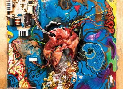 Timmy's Organism – Heartless Heathen