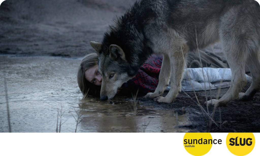 Sundance Film Review: Wild