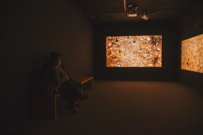 """Yoshua Okón's """"Oracle"""" plays out on the three screens inside a secluded room as a couple gazes in awe at its abstract meaning. Photo: talynsherer.com"""
