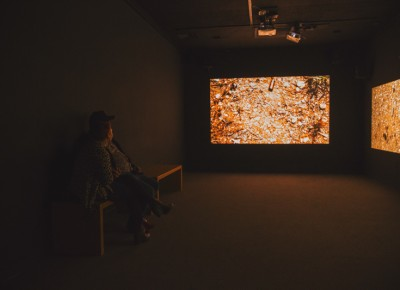 "Yoshua Okón's ""Oracle"" plays out on the three screens inside a secluded room as a couple gazes in awe at its abstract meaning. Photo: talynsherer.com"