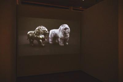 "Ivan Argote's ""Blind Kittens"" video showcases a groundbreaking battle between two foes. Photo: talynsherer.com"