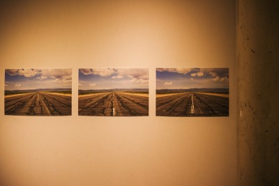 """An endless display of roads less traveled gets featured by artist Paul Crow in his """"Here"""" series. Photo: talynsherer.com"""
