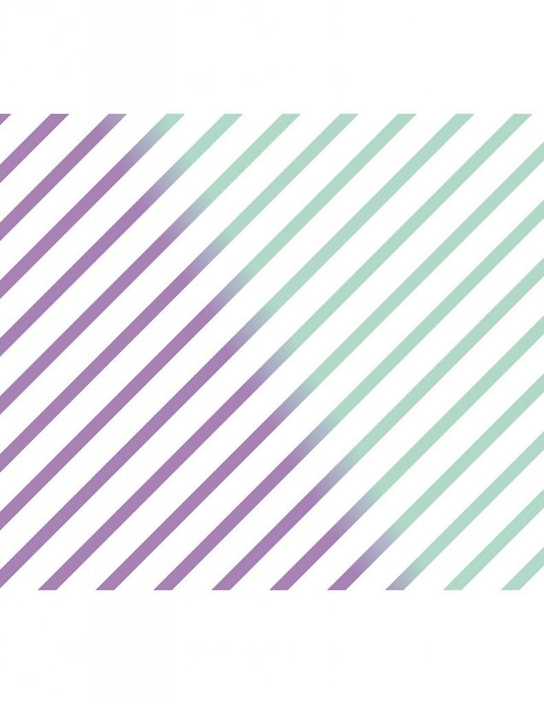 "Local Review: Color Animal/Magic Mint – 7"" Split EP"