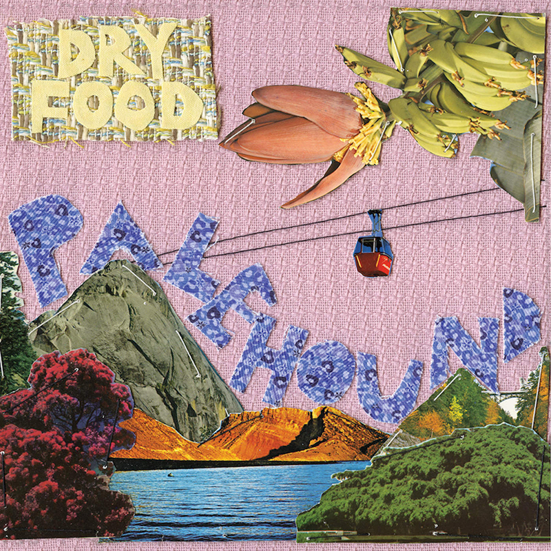 Review: Palehound – Dry Food