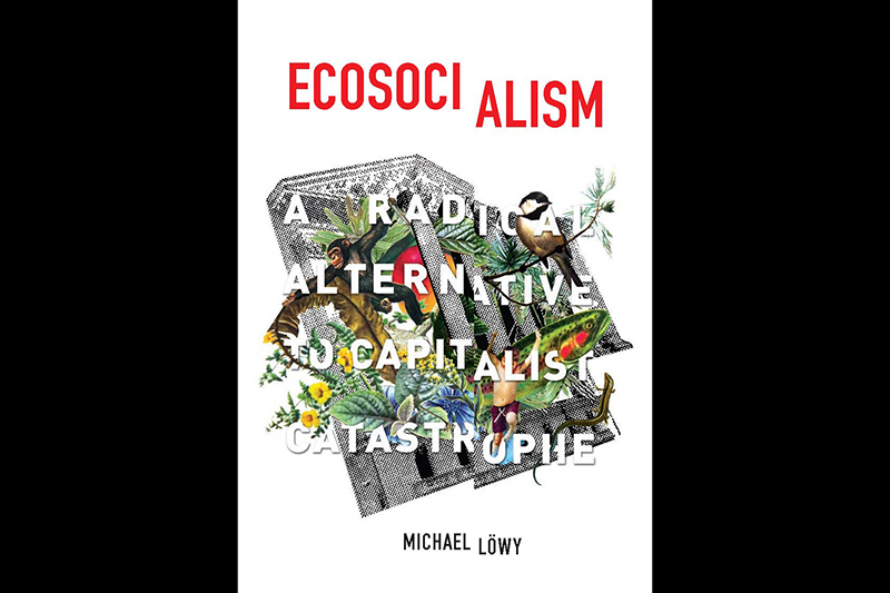 Review: Ecosocialism: A Radical Alternative To Capitalist Catastrophe