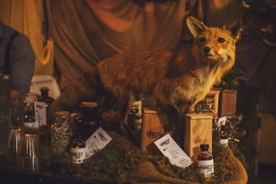 This curious taxidermied fox wants to get in on the conversation. Photo: Talyn Sherer