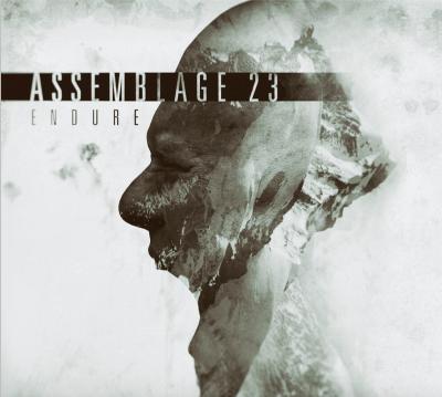 Assemblage 23 – Endure