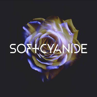 Soft Cyanide: Soft Cyanide