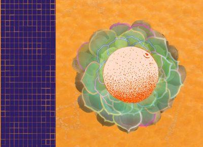 Batty Blue | Peeling an Orange or Flattening a Sphere