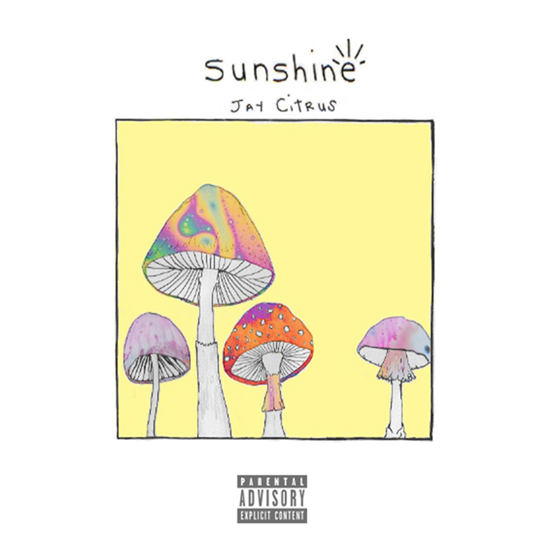 Local Review: Jay Citrus – Sunshine