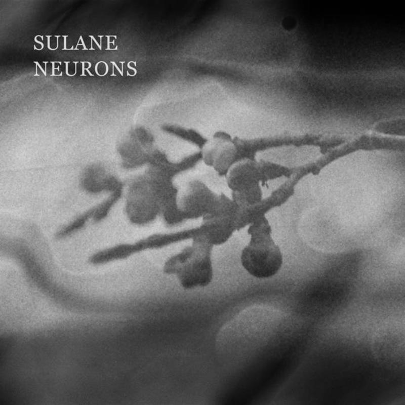 Sulane | Neurons | Inkjar Records
