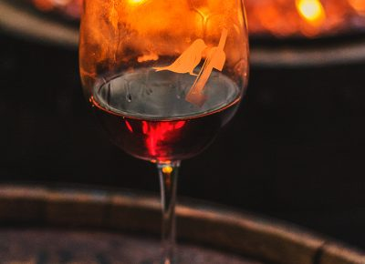 Can't think of a better way to spend a summer night than with a nice glass of wine next to a cozy fire at the Tracy Aviary. Photo: Talyn Sherer