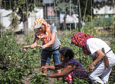 Photo: John Barkiple (L–R) Lynette, Ira and Joy participate in Wasatch Community Gardens' GREEN TEAM, which guides homeless women through education on how to garden amid other life skills.