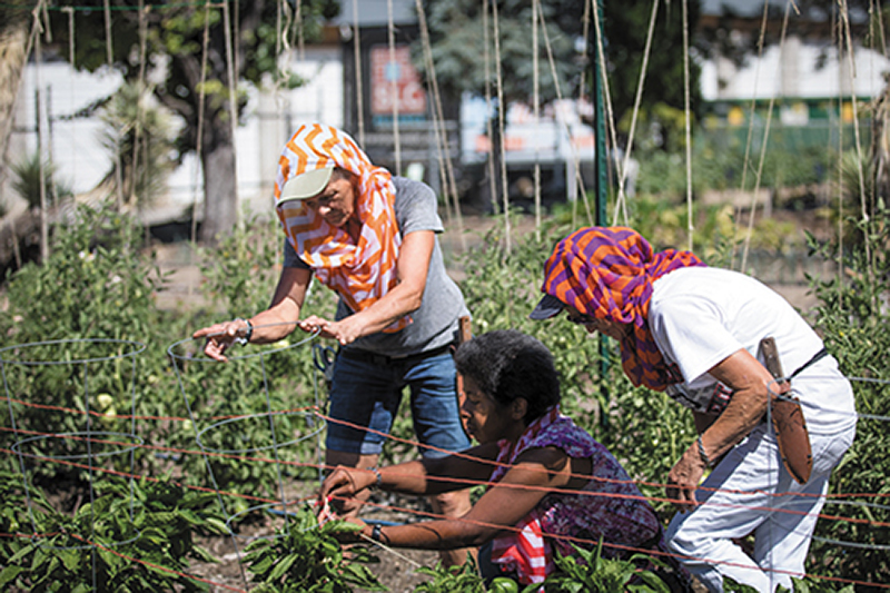 (L–R) Lynette, Ira and Joy participate in Wasatch Community Gardens' GREEN TEAM, which guides homeless women through education on how to garden amid other life skills.