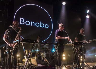 Bonobo. Photo: ColtonMarsalaPhotography.com