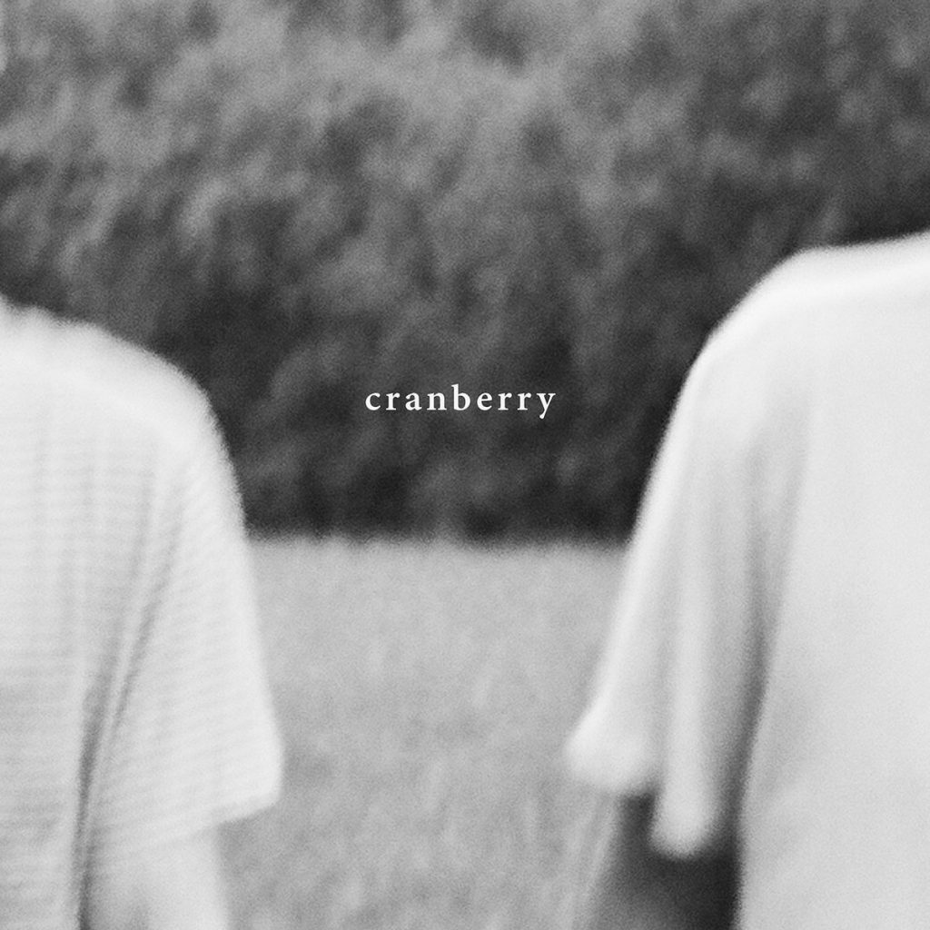 Review: Hovvdy – Cranberry