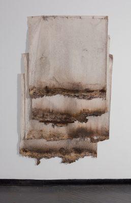 Kelly Larsen, Soil Soak (2018).