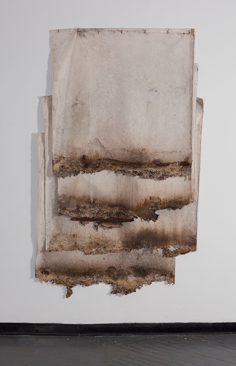 Kelly Larsen, Soil Soak (2018).