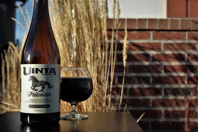 Beer of the Month: The Friesian