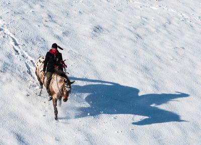 "Russel Albert Daniels, ""Native Horseman."""