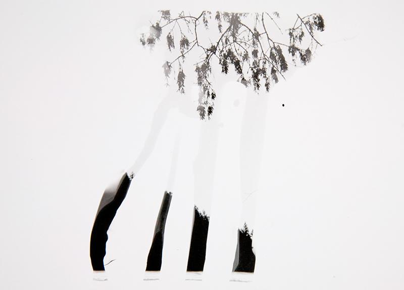 "Christine Baczek, ""Experiment 143."""