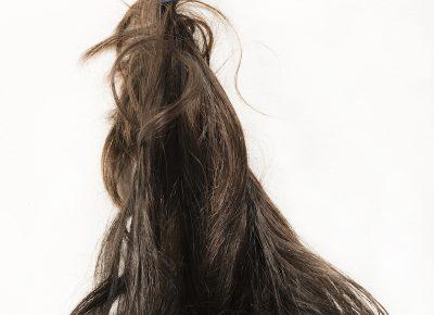 Fazilat Soukhakian, from Forbidden Hair (USA, 2015).