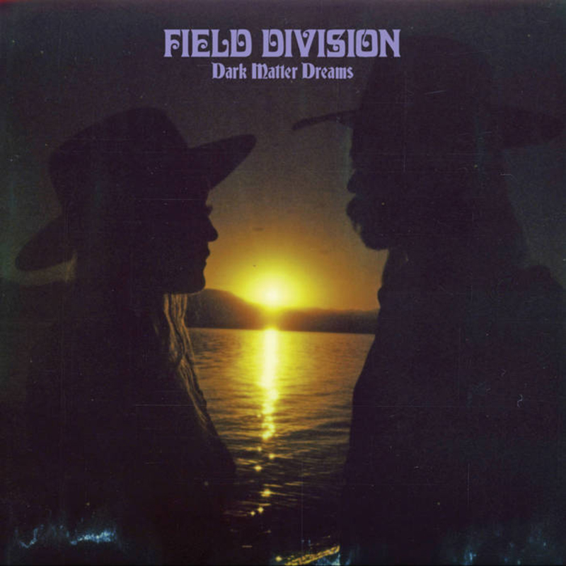 Review: Field Division – Dark Matter Dreams