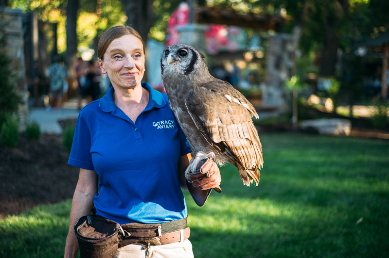 A Tracy Aviary handler walks around with a milky eagle owl, native to Africa. Photo: @clancycoop