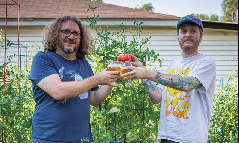 If you cross-breed a (L–R) Circus Brown and a Mike Brown, you don't get an Angela H. Brown—you just get a tomato. Photo: John Barkiple
