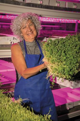 Strong Vertical Gardens' Debbie Strong implements sustainable hydroponic farming practices to produce local greens. Photo: John Barkiple