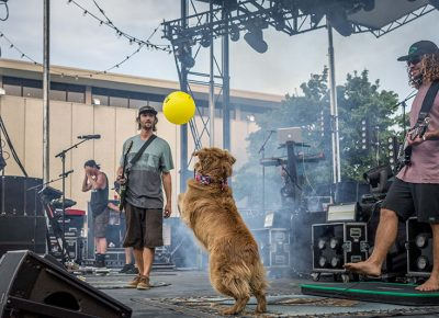 Cocoa goes crazy after a balloon floats onto stage.
