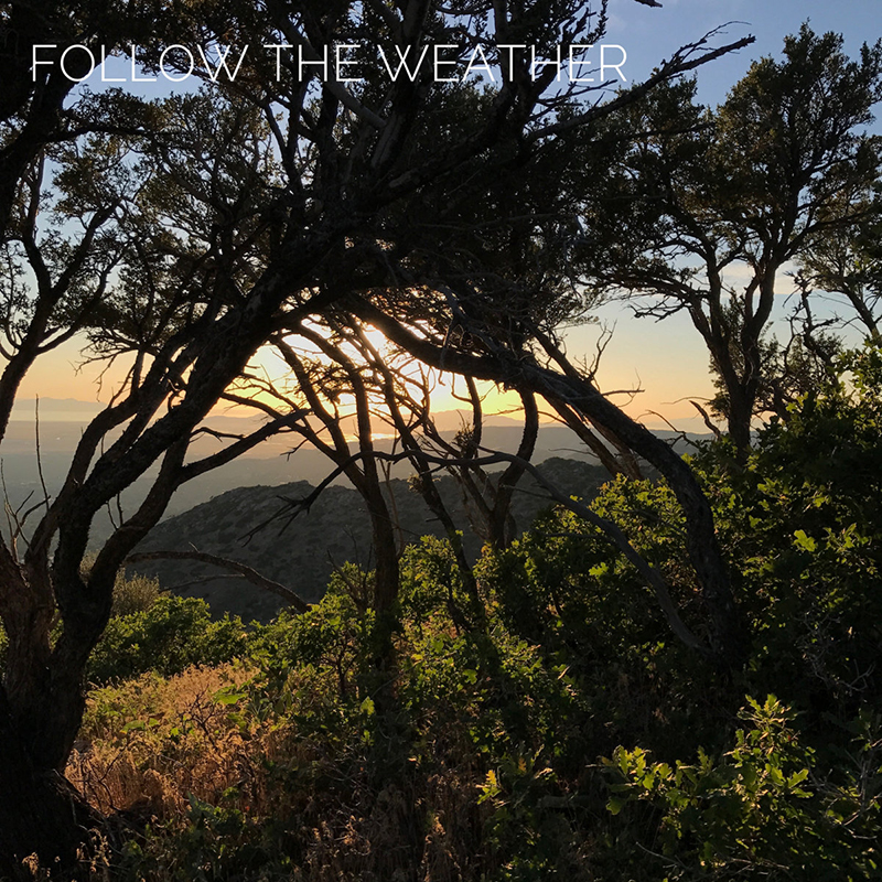 Local Review: Follow the Weather – First Light
